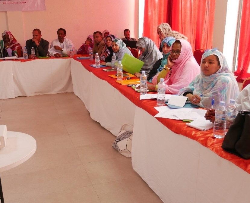 COMMUNICATION FOR THE INTRODUCTION OF THE VACCINE AGAINST HUMAN PAPILLOMA VIRUS IN MAURITANIA