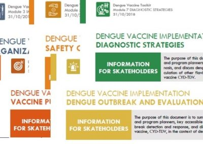 TECHNICAL SUPPORT TO DENGUE VACCINE IMPLEMENTATION: INFORMATION FOR DECISION-MAKING